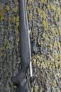 Коллиматорный прицел Aimpoint Micro H-2 с точкой 2 МОА и защитными крышками на Tikka T3