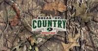 Сетка Allen обьемная 3D в цвете Mossy Oak Break-Up Country для создания засидки