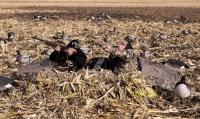 Засидка Banded лежачая для охоты на гуся двухместная цвет Realtree Max-4 camo